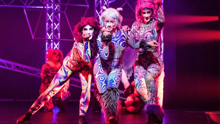 cats the musical perth